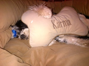 karma sleeping